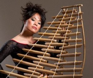 The Odyssey - From Vietnam to America: An Interview with Van-Anh Vo